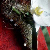 K800_orchideenherz